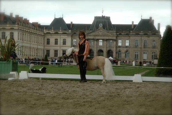 3ème Rencontres Equestre 2013 de Lunéville