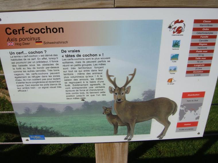 CERF-COCHON