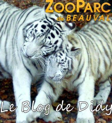 Connais-tu bien le ZooParc de Beauval ?