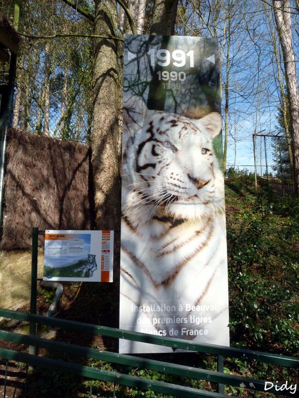 nouveaux panneaux dans les allées de beauval