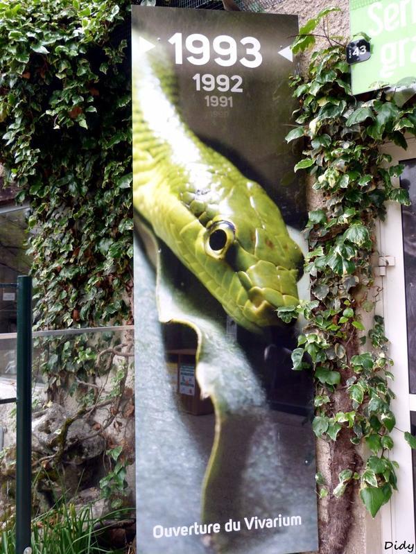 nouveaux panneaux dans les allées de beauval et statues (suite 2)