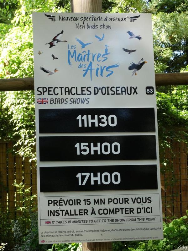 """nouveau spectacle d'oiseaux 2014 """"les maîtres des airs"""",le 21 Août"""