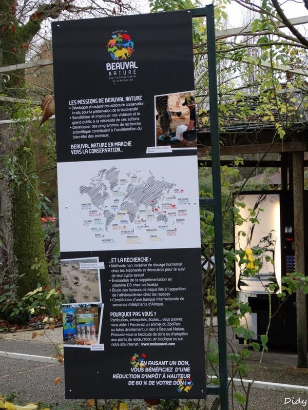 nouveaux panneaux dans les allées de beauval et statues (suite 6)