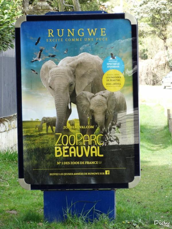 PANNEAUX PUBLICITAIRES 2015