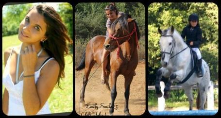Welcome On American Western ! Chaque cheval a son histoire, les miens ont la leur, et il font partit de la mienne... ♥