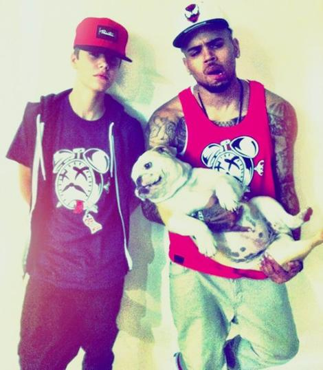 LoveBieberPhotos 421   (Justin, Chris Brown, et un gros chien. )
