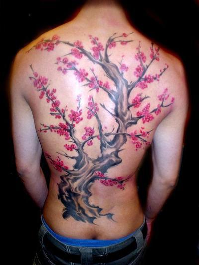 Série Cerisier