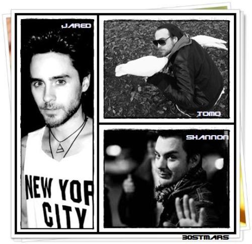 Jared-Tomo-Shannon lequel est votre chouchou ?
