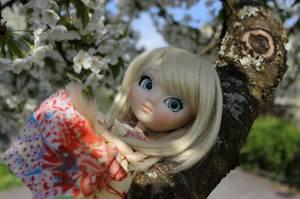 « Le printemps est la saison où les garçons commencent à comprendre ce que les filles ont su tout l'hiver.  » [O. Henry]