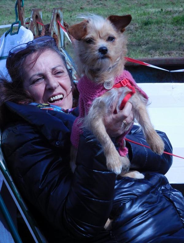 un particulier courageux avec son chien qui valent bien une photo pour vous souhaiter une belle fin de semaine !