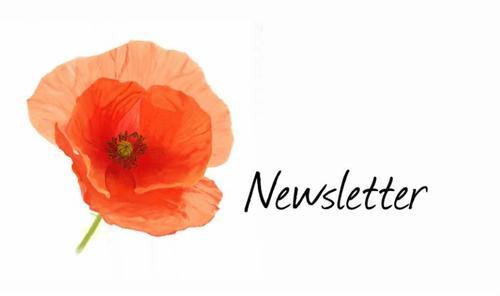 Newsletter & coup de gueule