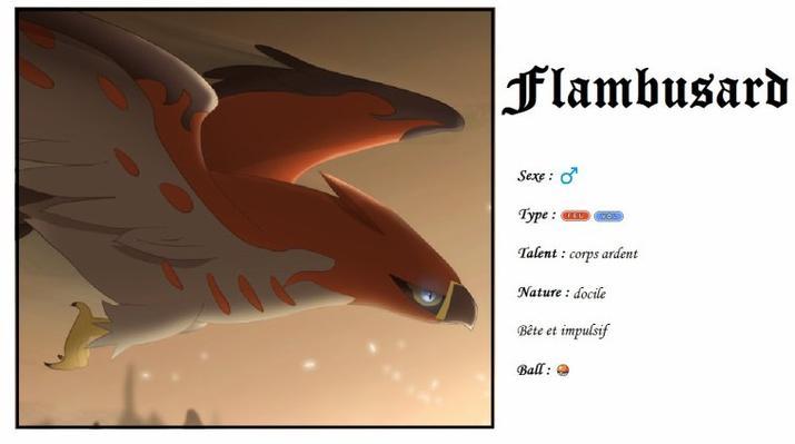 Mon équipe dans Pokémon Y + le légendaire