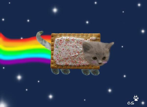 Testez vous Nyan Cat