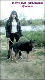 _ Pix : _Myself & Dogs _♥