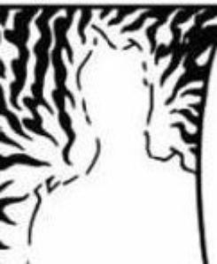 PTDR !!! La silhouette devant Sasuke ? Un jeu d'enfant pour moi ! xD