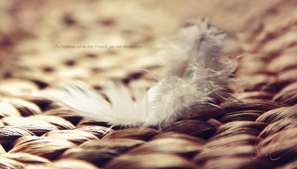 . Le bonheur est un état d'esprit, pas une destination..