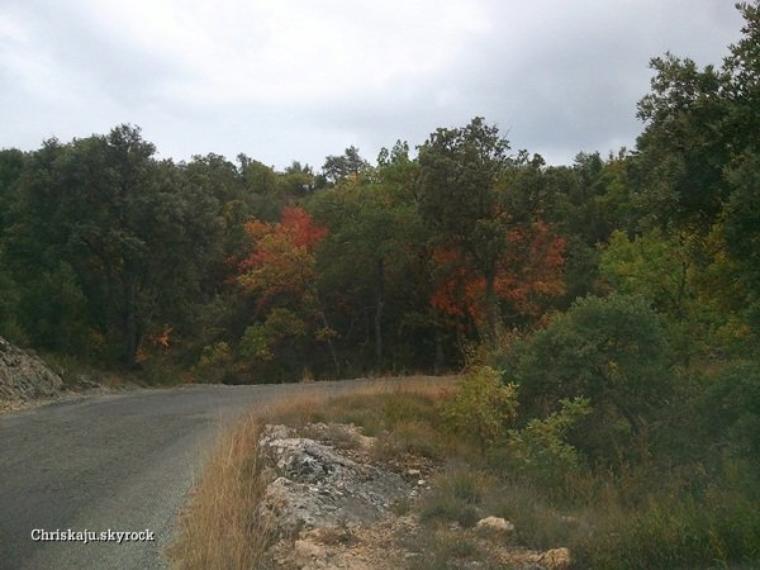 Début de l'automne 2011