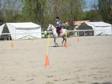 Championnat Pony-Games Académiques 2013