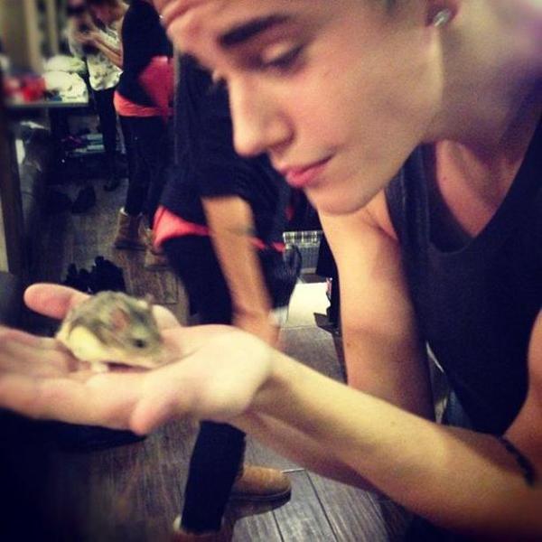 30/12/12 : Justin Bieber : Son hamster a des soucis de santé ?!