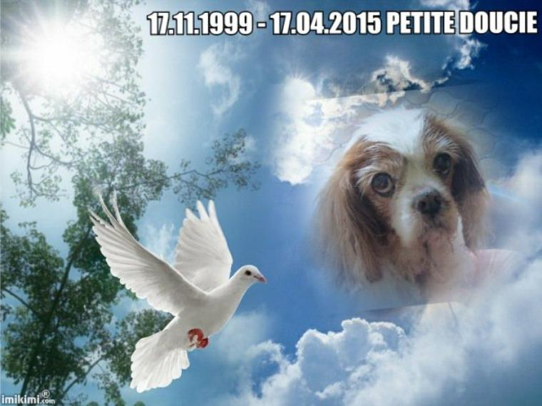 repose en paix Petitedoucie