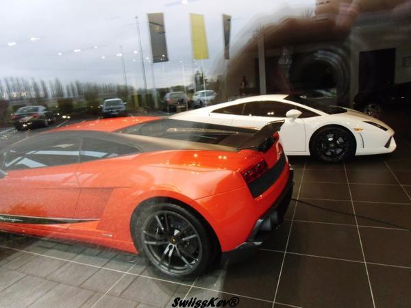 Lamborghini Gallardo Superleggera Edizione Tecnica & Gallardo