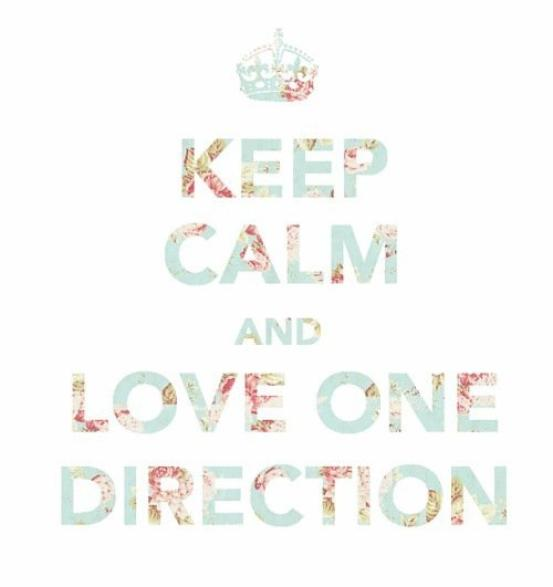 C'était une belle journée d'été partie 2: Keep Calm And Love One Direction