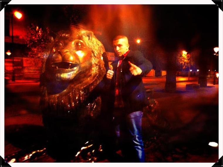 Motif-fez lion de l'atlas