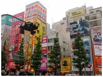 DAY 11 : Akihabara & Shibuya
