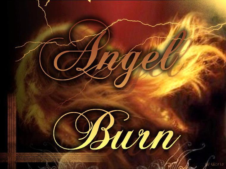 Angel Tome 1 :  Angel Burn