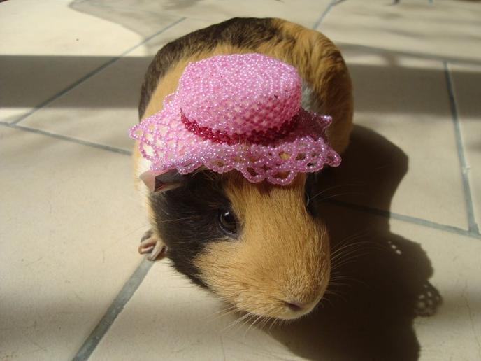 Jeu nati : chapeau (créa perso nati)