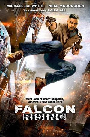 Falcon Rising le nouveau Michael Jai white !!!!!