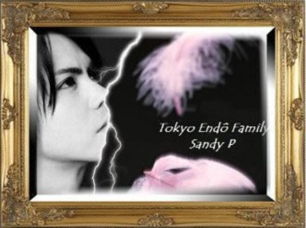 Ma fiction : Tokyo Endo Familly
