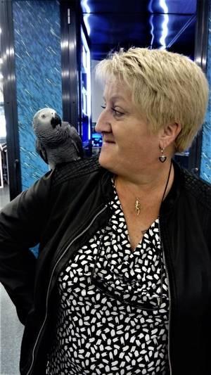 Aller dans une animalerie et avoir un Gris du Gabon qui vient se poser tranquillement sur mon épaule, moi je craque j adoreeeee