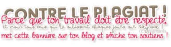 Présentation + Sommaire + petite info.