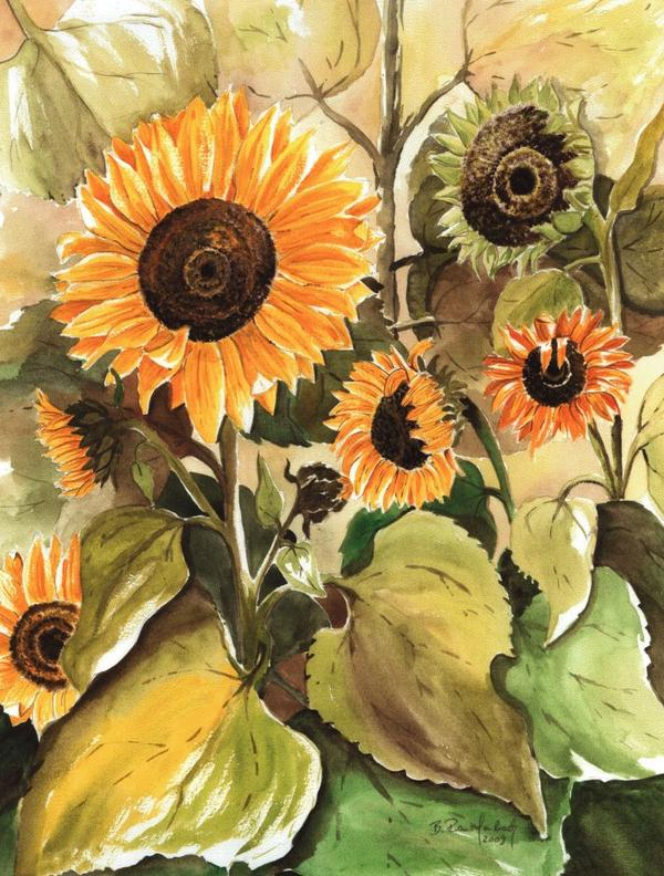 Nochmals Sonnenblumen / Spruch der Woche