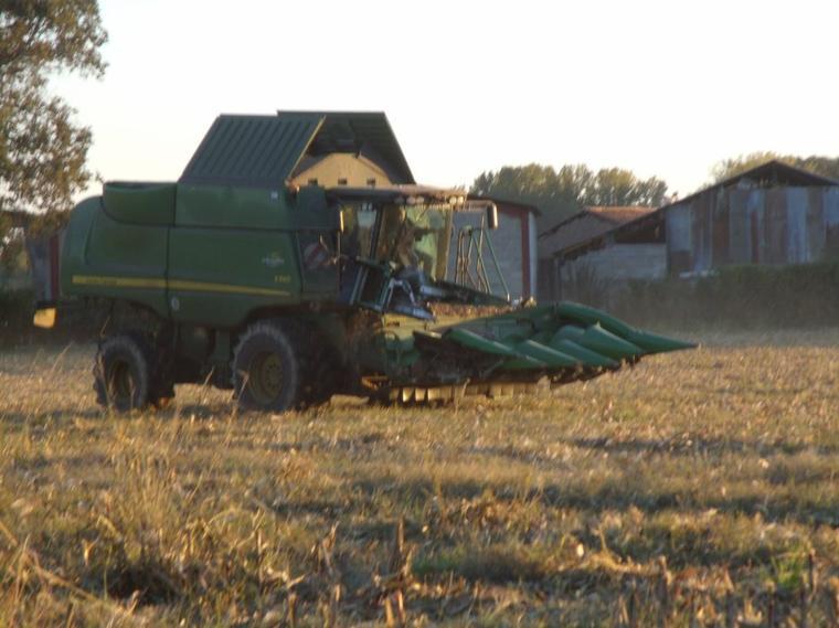 moisson du maïs 2012 la John Deere S560