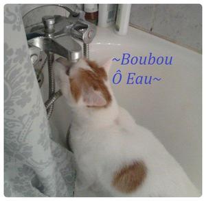 Boubou 1st debut single