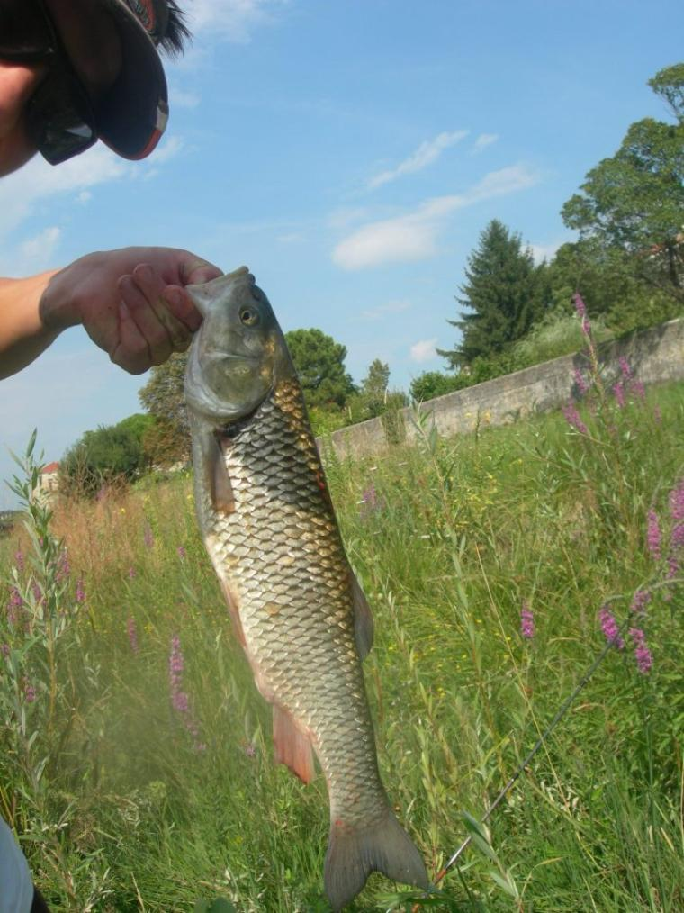 petite pêche !