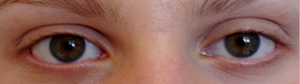 Maquillage pour les yeux verts