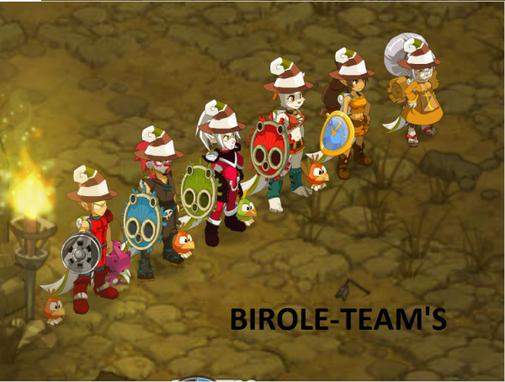 Présentation de birole-team
