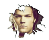 hh------------------------------------------------------------------------------- Welcome on Supernatural-com ! hh---------------------------------------------------------------------------