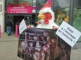 Campagne Monoprix, à Lorient, le 12 Novembre 2011