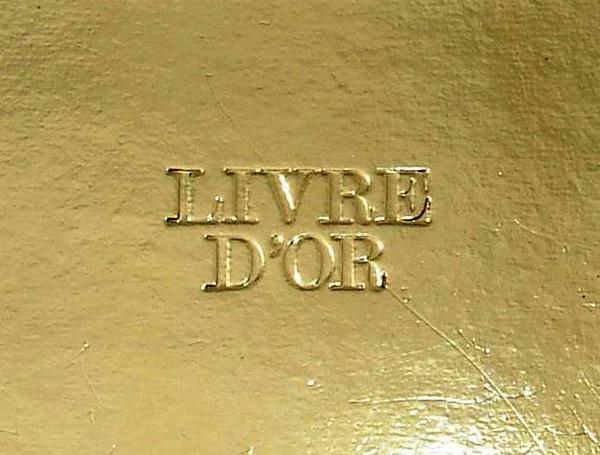 NOUVEAUTE   :      LE   LIVRE   D '  OR   DE   BRYAN-29-06