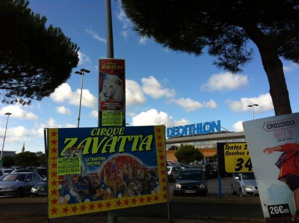 Cirque Claudio zavatta (4)