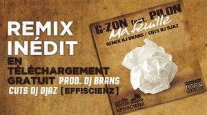 TÉLÉCHARGEZ GRATUITEMENT (FREE DOWNLOAD) !!!  LE REMIX INÉDIT PRODUIT PAR DJ BRANS & DJ DJAZ (EFFISCIENZ, RAW STREET MUZIK)