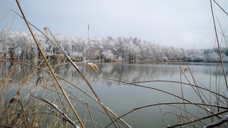 Pour les férus de Nature,Ornithologie,Pèche,Chasse,Balade un séjour dans le Parc de la Brenne s'impose.
