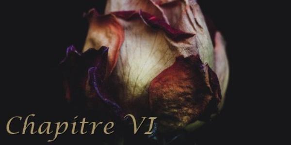 La Renaissance du Roux VI