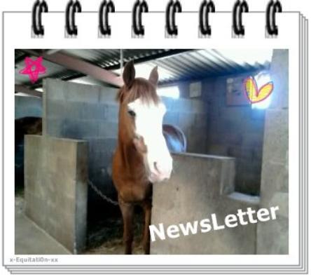 Newsletter ...