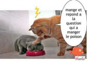 trop drôle !!!