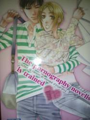Fiche Manga - The pornographes novelist is trained